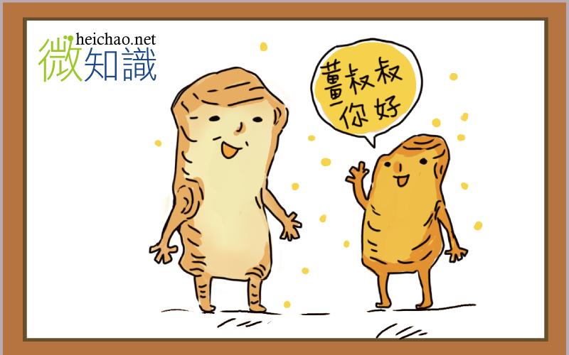 【微飲食】生薑與薑黃是同樣的食材嗎?