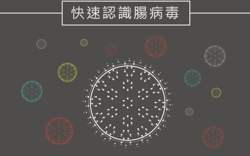 【健康微知識】腸病毒系列_認識腸病毒