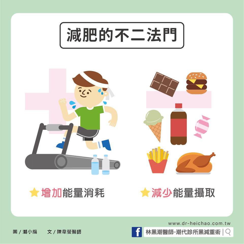 了解基礎代謝率,創造能量負平衡為減肥的不二法門