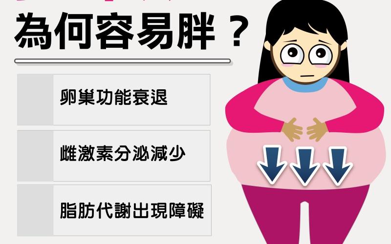 更年期為何容易胖? /文:許錦銓醫師