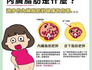 內臟脂肪是什麼?/文:夏明輝醫師