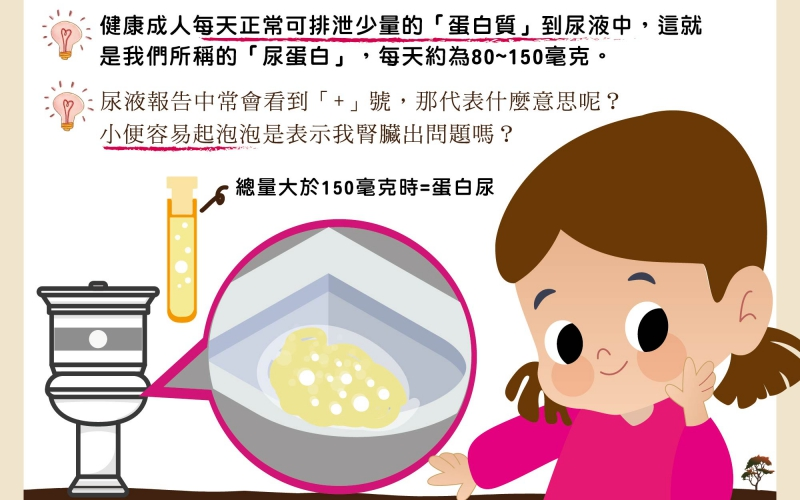 何謂蛋白尿?/文:王世杰醫師